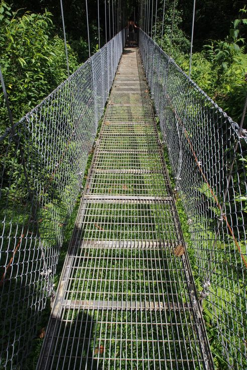Au Arenal hanging bridges