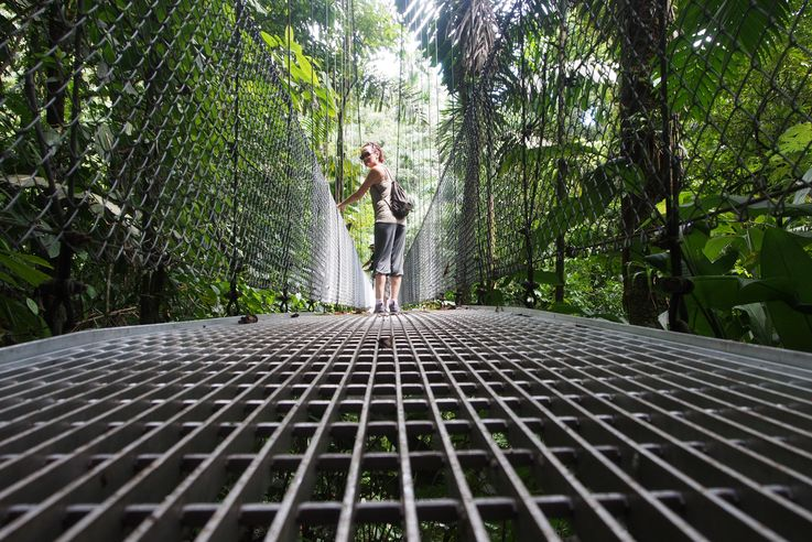 Pont suspendu au Arenal hanging bridges