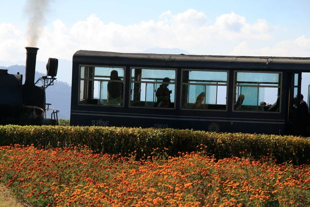 Darjeeling et le Joy ride (toy train)