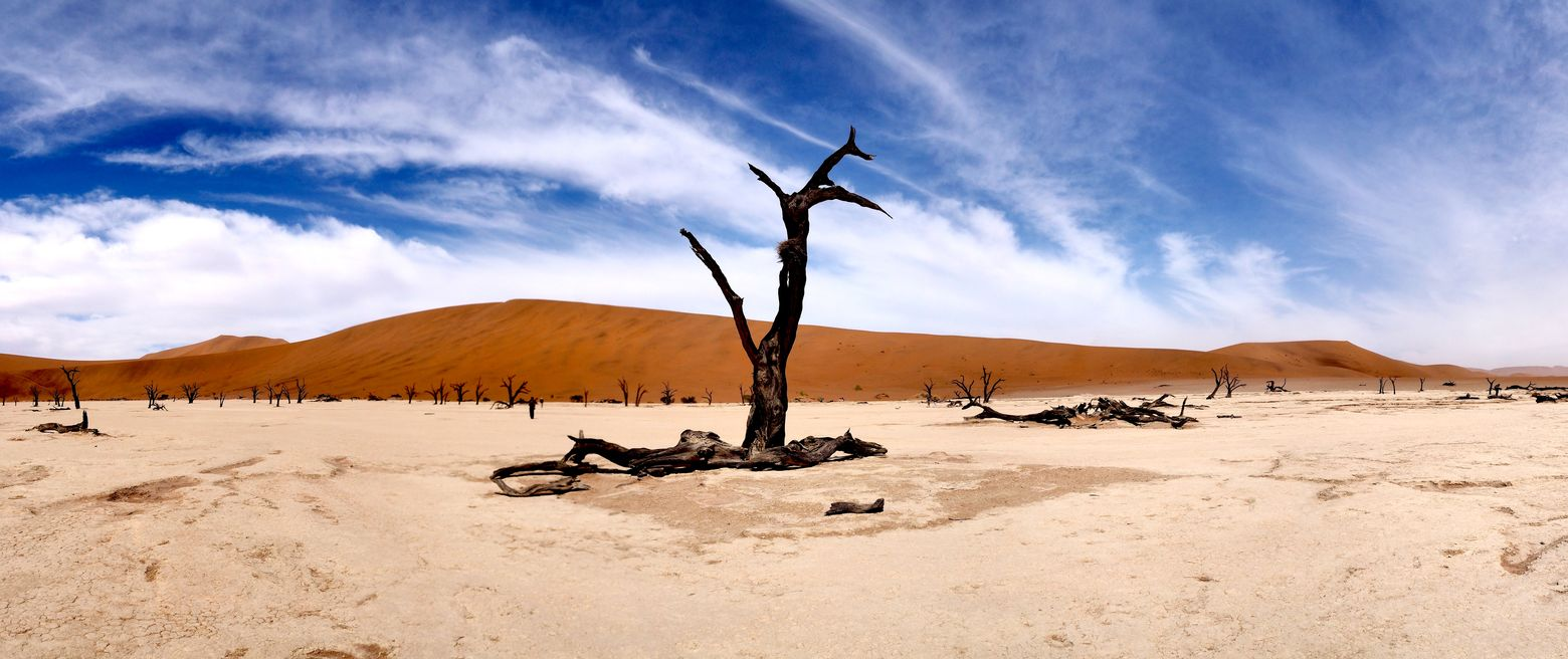 Deadvlei (Naukluft parc)