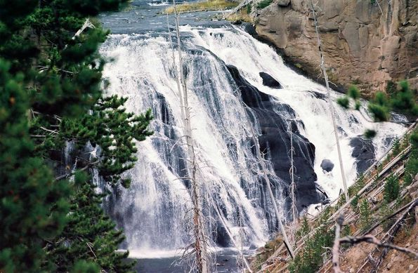 Gibbon falls. Yellowstone.