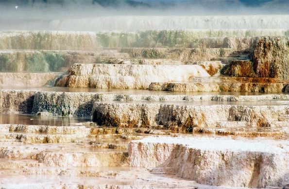 Minerva terrace à Yellowstone.